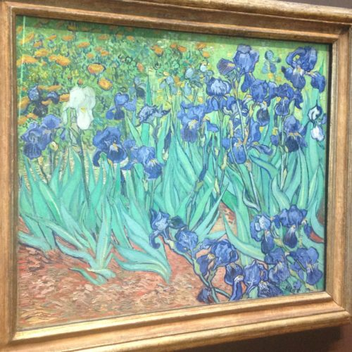 Van Gogh's Irises at the Getty